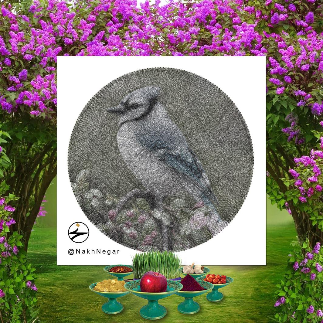 نخ نگار - تابلونخ تزئینی پرنده بلو جی